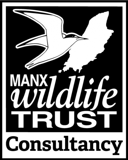 MWT consultancy logo